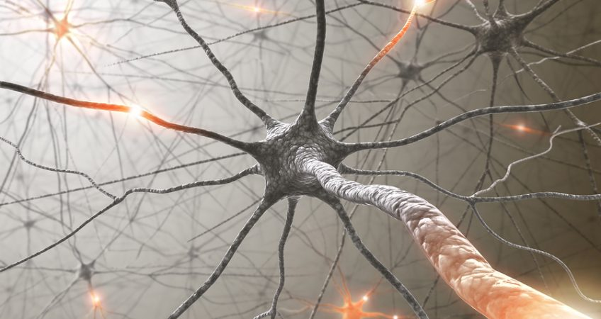 HOW DOES CBD AFFECT THE NERVOUS SYSTEM?